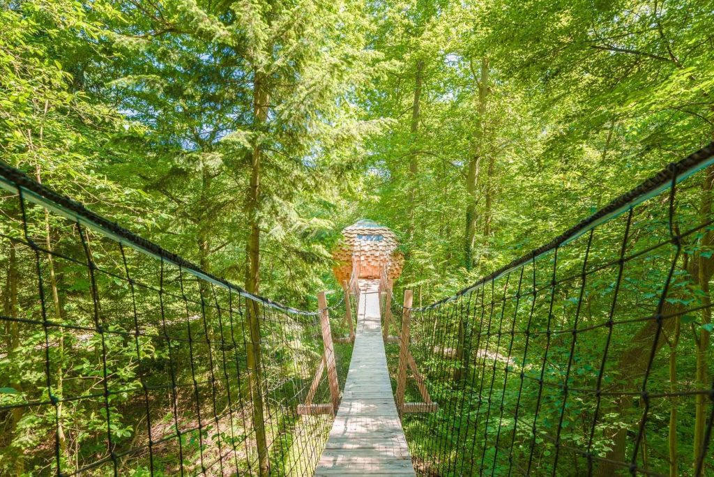 Cabane-arbres-Lov-Nid-cozy